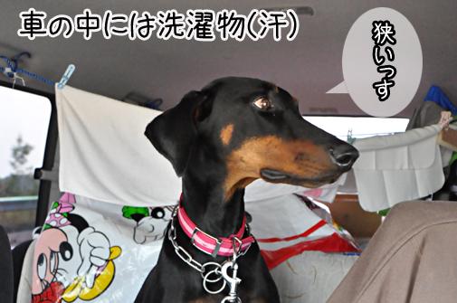 tomakomai201105