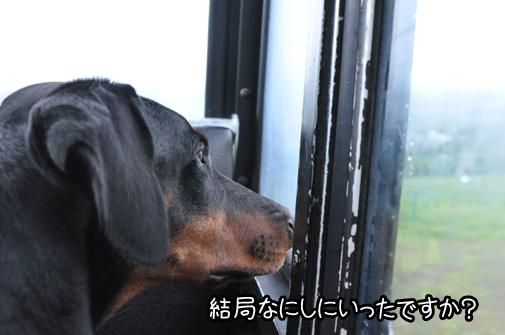 tomamu201110