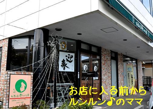 yukiusagi01