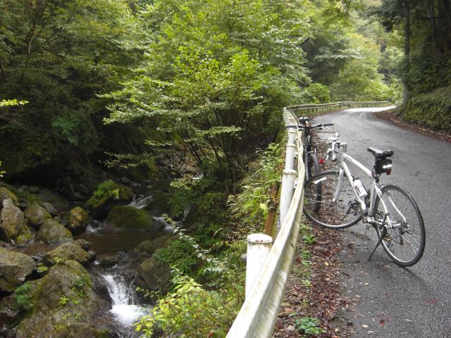 県道73号線 有間峠への道