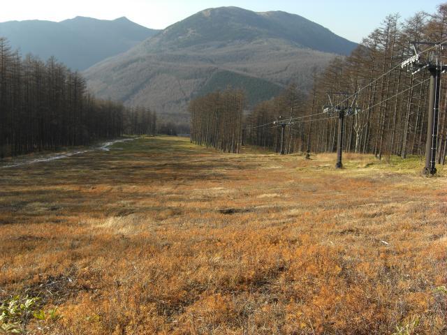 1107地蔵峠までの道景色2