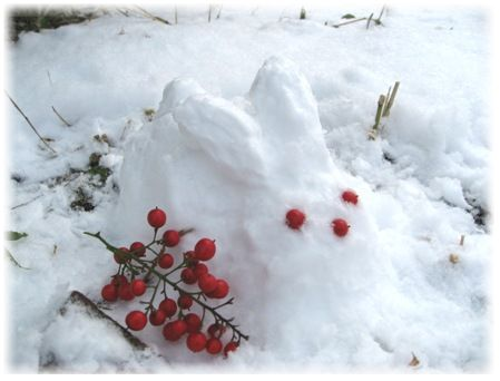20101月雪 007