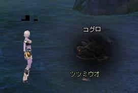 20110908(コグロ)