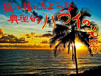典型的ハワイの光景