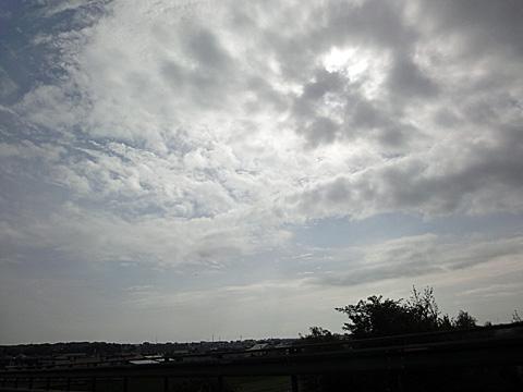11DSC01131.jpg