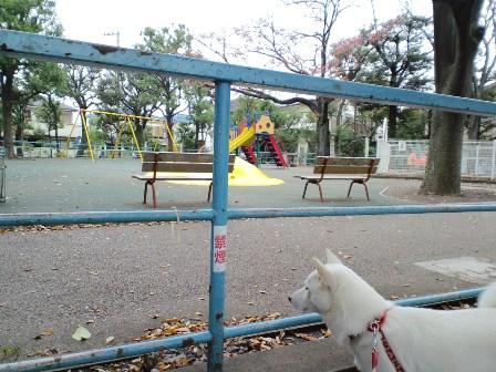 子ども公園