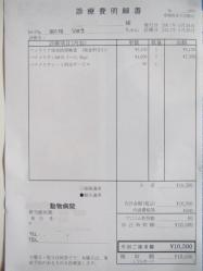 20110526 042