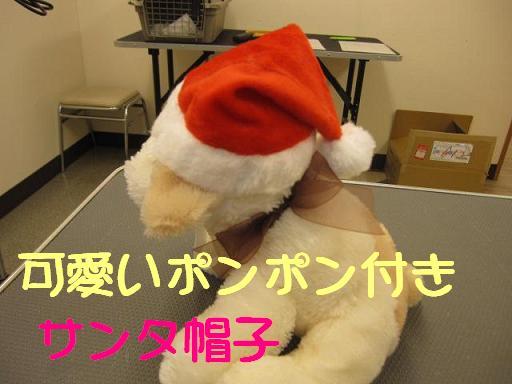 ブログ サンタ帽子