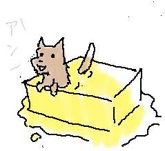 バター犬j