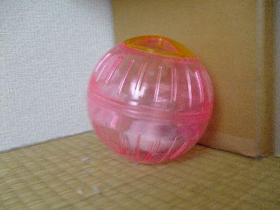 20090926_01.jpg