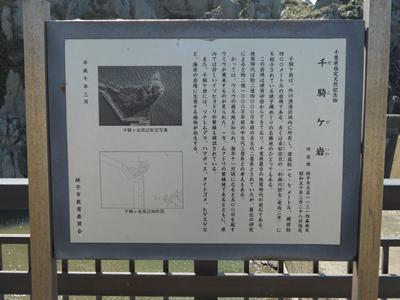 DSCN0690-13.jpg