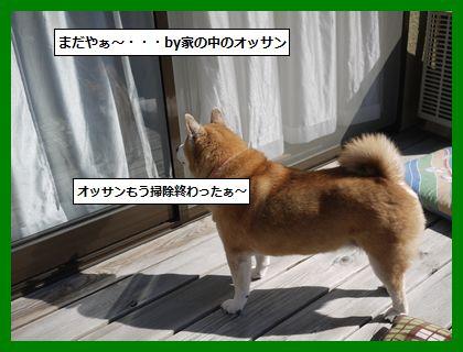 akihare1.jpg