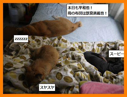 akihare5.jpg