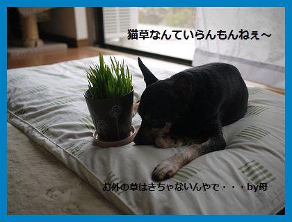 byouki2.jpg