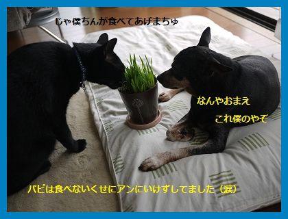 byouki3.jpg