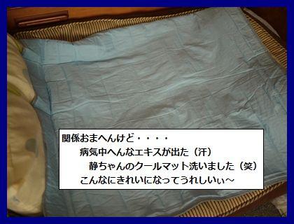 mizunomiki3.jpg