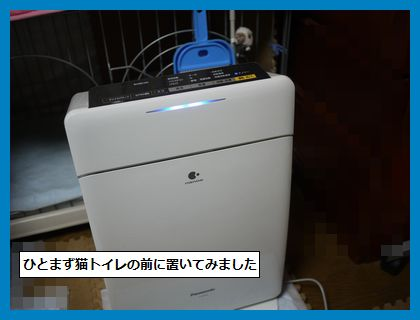 seijyouki1.jpg