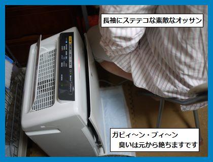 seijyouki2.jpg