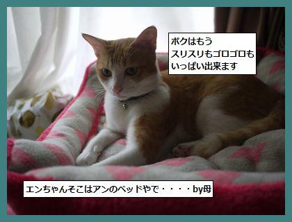 sikaru2.jpg