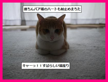 yakitori2