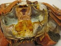 (blg)上海蟹