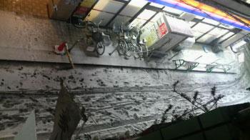 雪2011.2.14