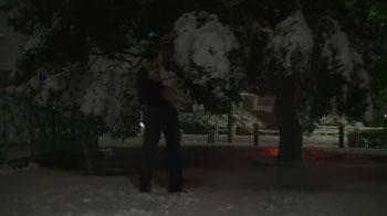 バディと私と雪。