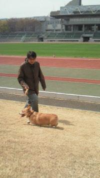 2011年4月桜とバディと俺と武蔵野陸上競技場