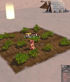 My農場1