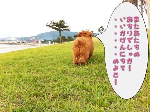 01_20110607094636.jpg