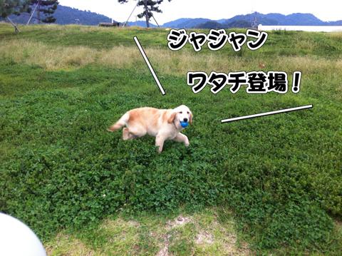 01_20111003004517.jpg