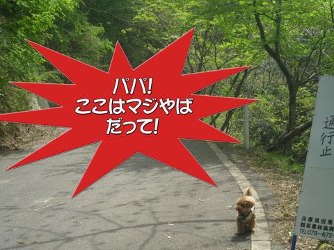 02_20110510175144.jpg