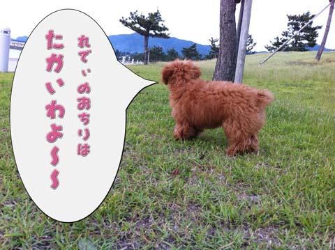02_20110607094636.jpg