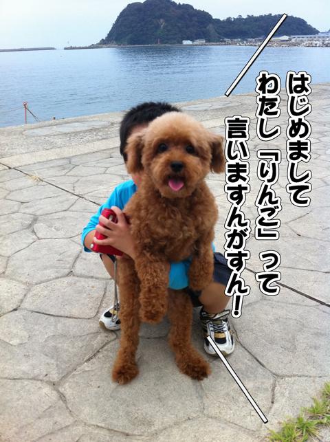 02_20111003004517.jpg