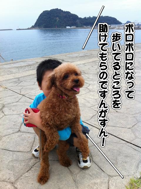 03_20111003004516.jpg