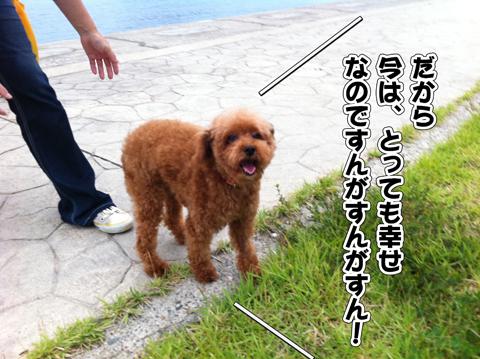 04_20111003004516.jpg