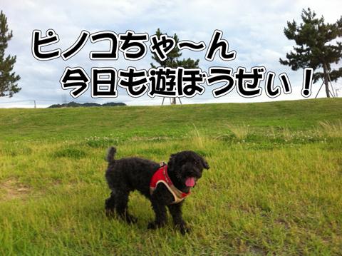 05_20110716173848.jpg