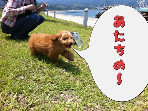 06_20110603233051.jpg