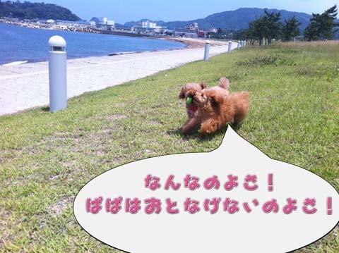 07_20110603233028.jpg