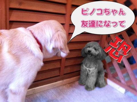 07_20110920120122.jpg