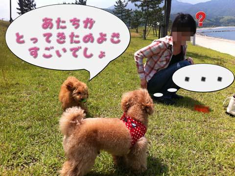 10_20110603233026.jpg