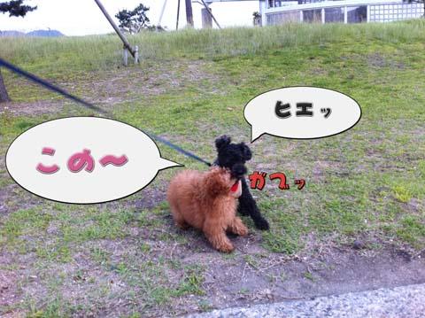 10_20110607094609.jpg