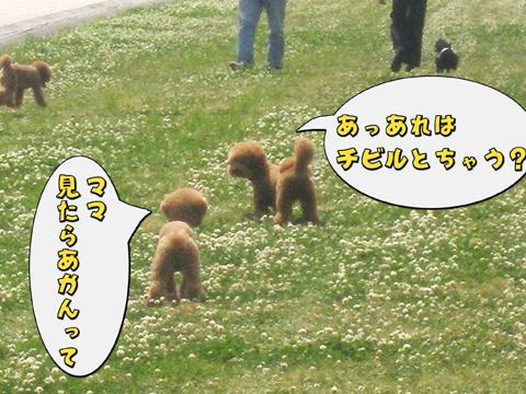 12_20110523223202.jpg