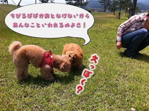 12_20110603233025.jpg