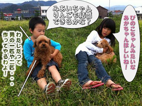12_20111003004416.jpg