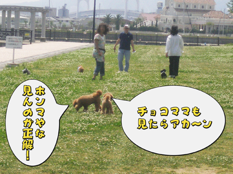 13_20110524104359.jpg
