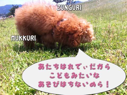 18_20110603232951.jpg