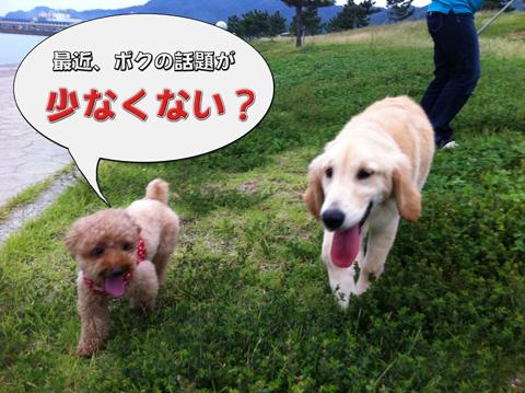 18_20111003004342.jpg