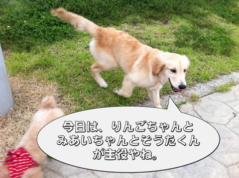 19_20111003004342.jpg