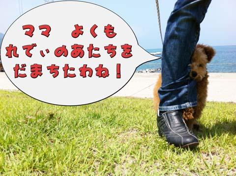 21_20110603232920.jpg